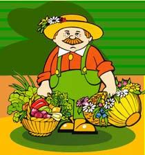 Allt om din trädgård